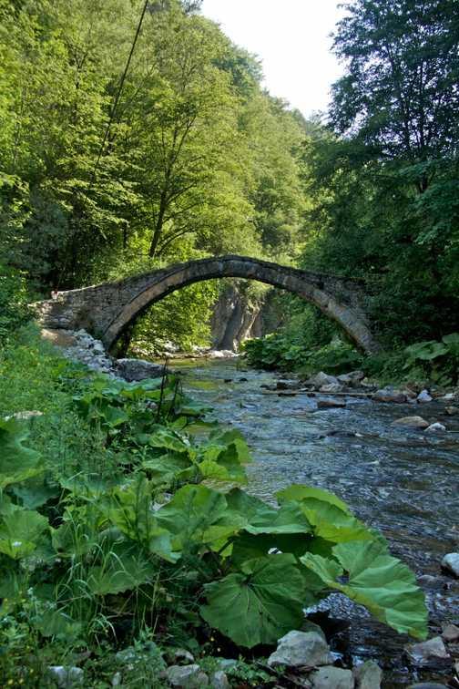Bridge by Yagodina Cave