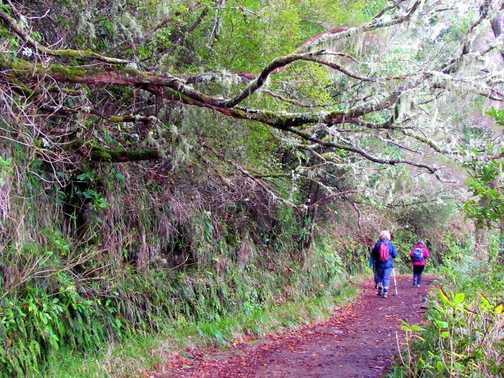 Caldeirao Verde Walk
