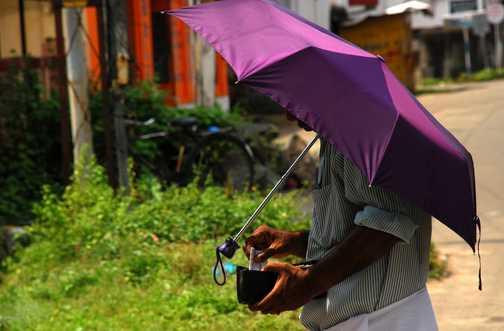 silk cut umbrella