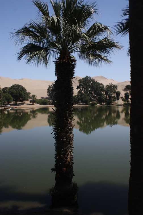 Oasis at Nazca