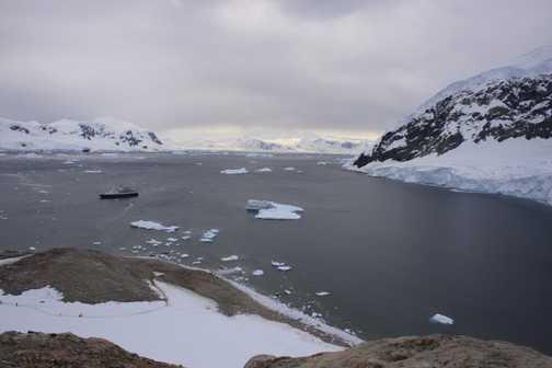 Neko harbour from hike site