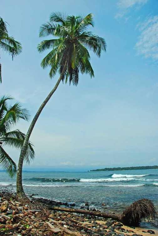 Caribbean Beach Panama