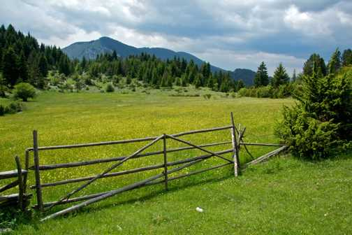 Gate to the Meadows