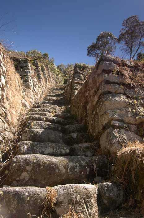 Steps!