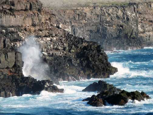 The more exposed coast of Espanola.  The wind hitting the cliffs is handy for the Albatrosses as it