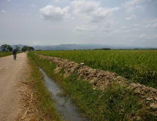 Cycling through countryside