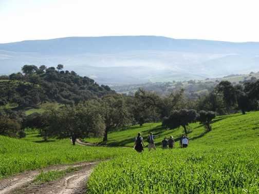 Walking the hills