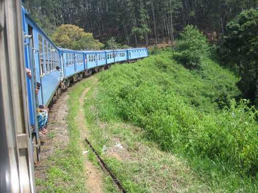 Train from Horton Plains down to Ella