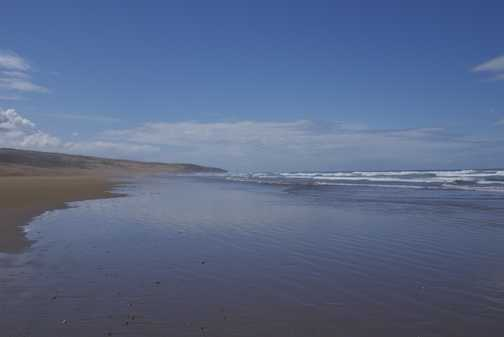 Tranquility and empty space-10km beach walk