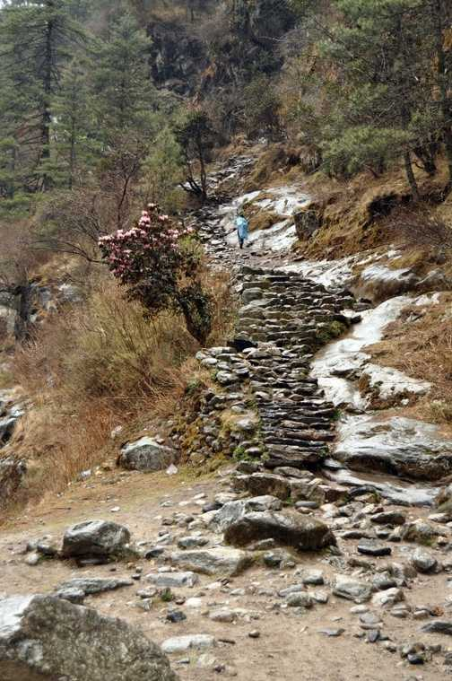 The climb to Namche Bazaar begins