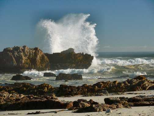 Waves at Hermanus