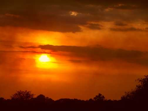 Serengeti ... have to have a sunset somewhere!