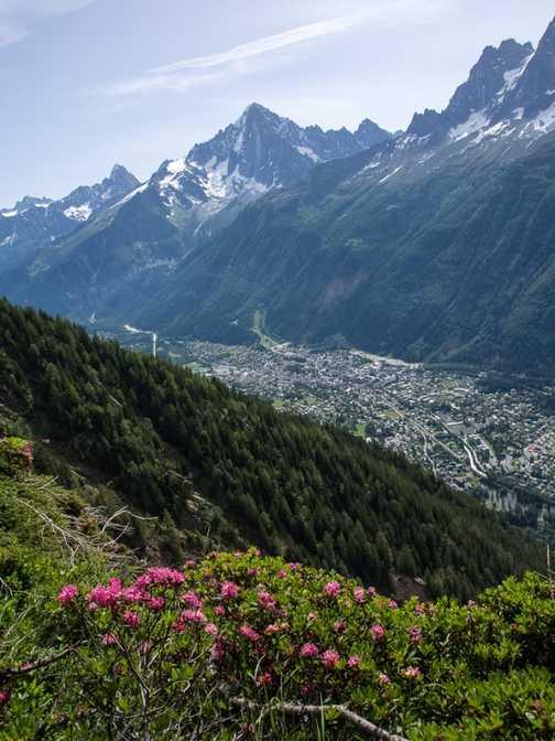 Paraglider over Chamonix