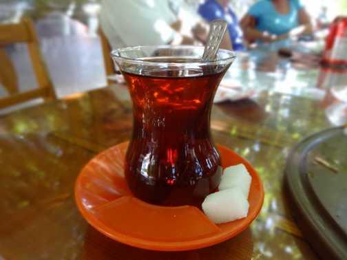 Turkish Pitta