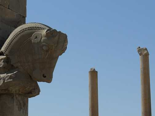 And Darius the Great wins by a head . . . Perseoplis.