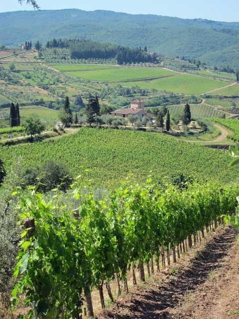 Tuscany 17