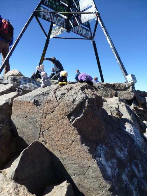 Bungy, vernan and fireball enjoying toubkal summit