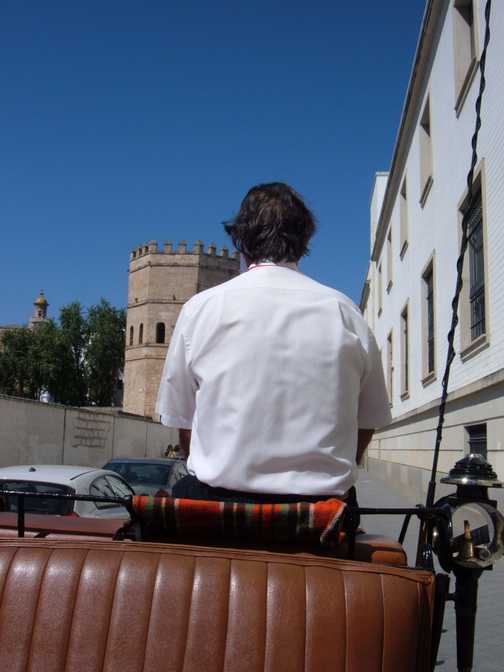 Seville by horsedrawn carriage