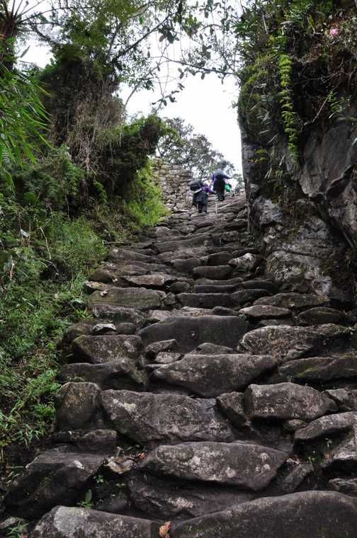 lots of steps on the inca trail!