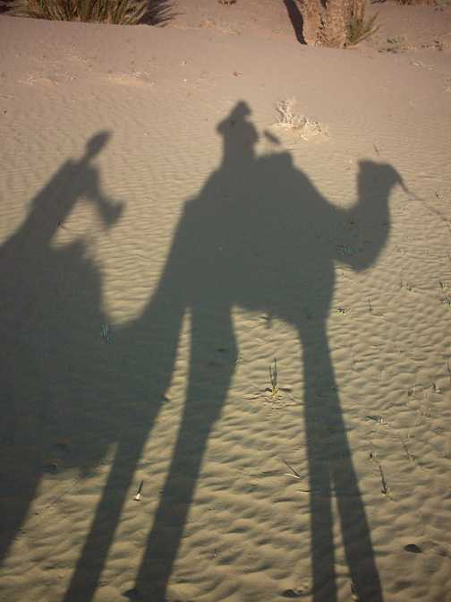 the caravan - only 52 more days til Timbuktu!