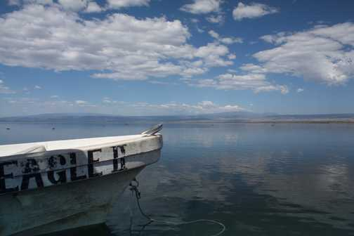 Lake Navaisha hippos
