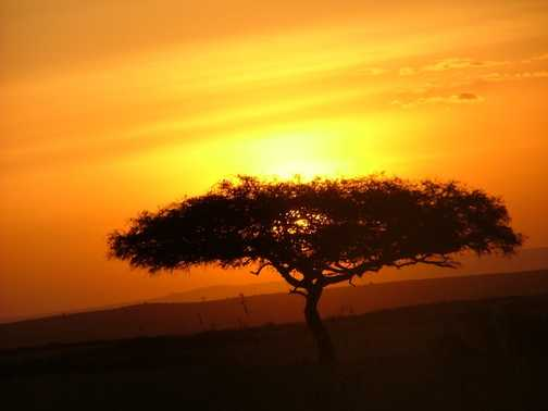 Kenyan sunset 2
