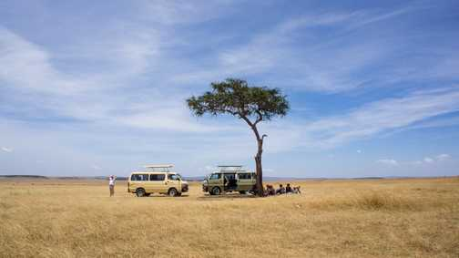 Enjoying a snack in the middle of the Savannah - Masai Mara
