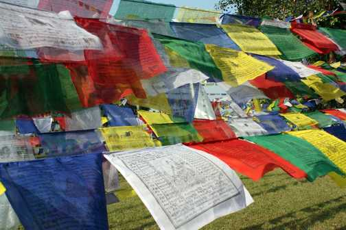 Prayer flags in Lumbini