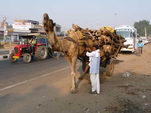 Transport with a hump