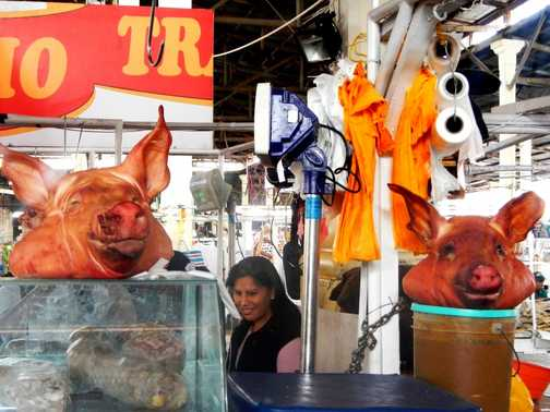 Peruvian lady tries unsuccessfully to play piggy in the middle.