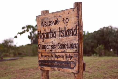 Ngamba Island. A hop, skip and a throw from Entebbe.