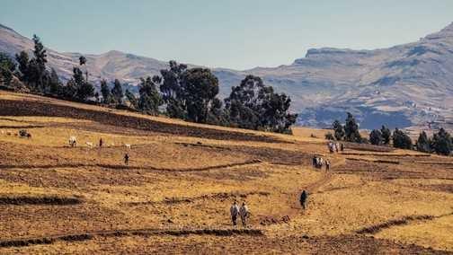 Ethiopian landscapes