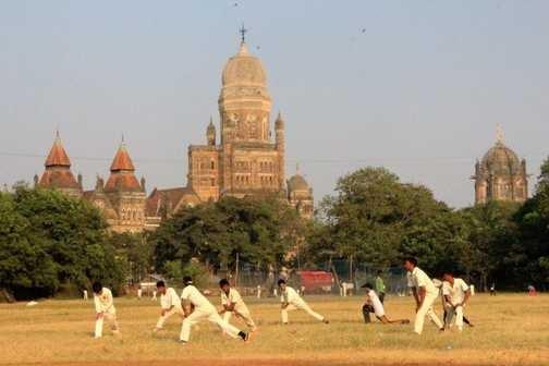Cricket, lovely cricket!