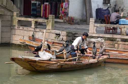 Tongli Street Life (4)