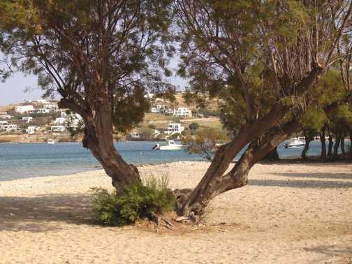 Beach at Paros