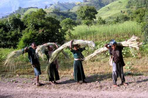 Children carrying crops