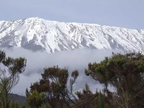 Kili view