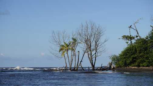 the caribbean sea at Tortuguero