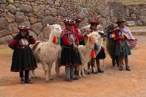 Peruvian women and alpacas