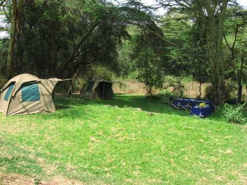Selela Forest camp