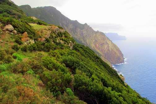 Boca do Risco Cliffs Levada do Canical Walk