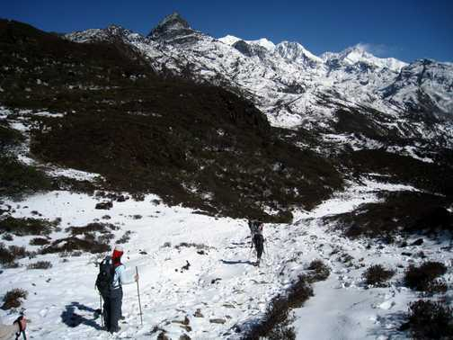 Trail from Dzongri to Tangshing