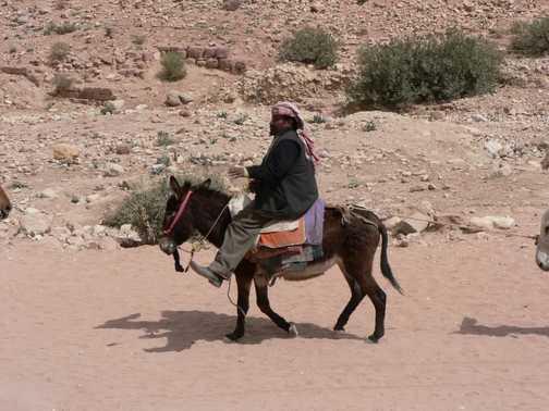 in Petra