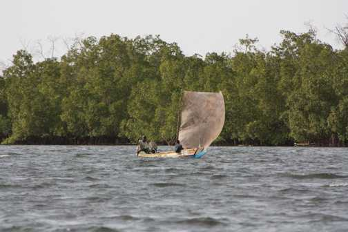 Fishermen at Sine Saloum