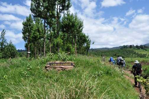 Starting the Lemosho Route