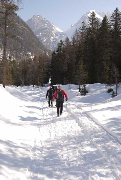Pragser Wildsee Walk