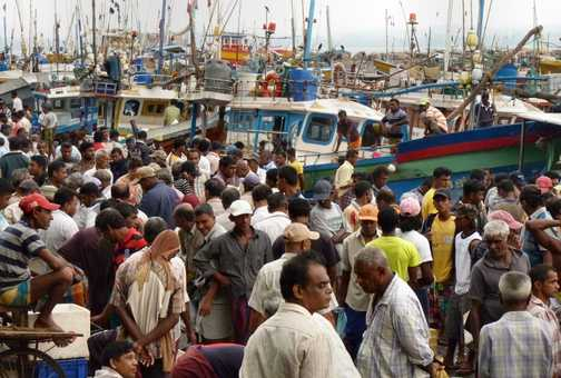 Fish market 3