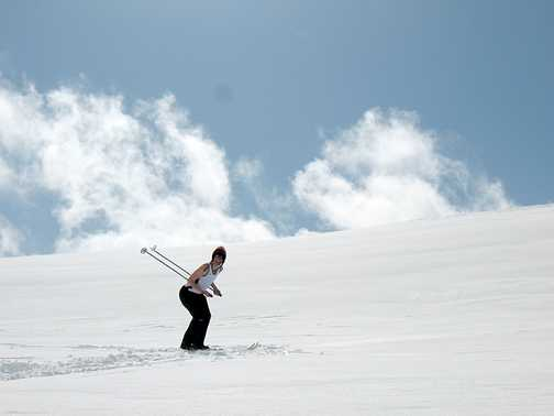 Snow scene - one of Mary's photos