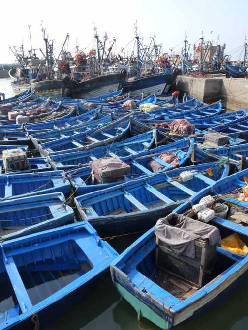 By Essaouira harbour