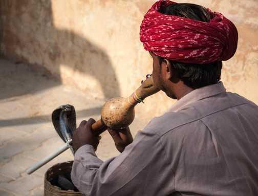 Charming! Jaipur